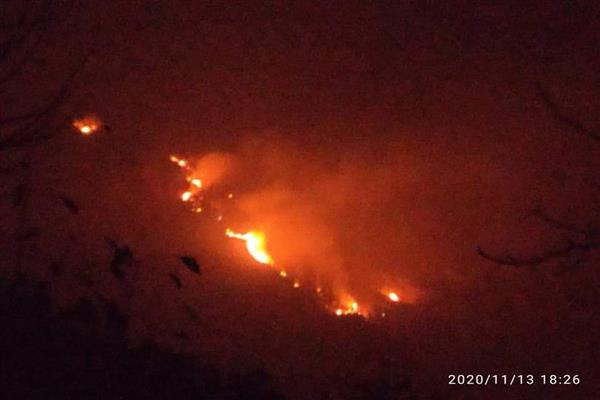 Massive Forest Fire In Sindh Forest Range Kangan