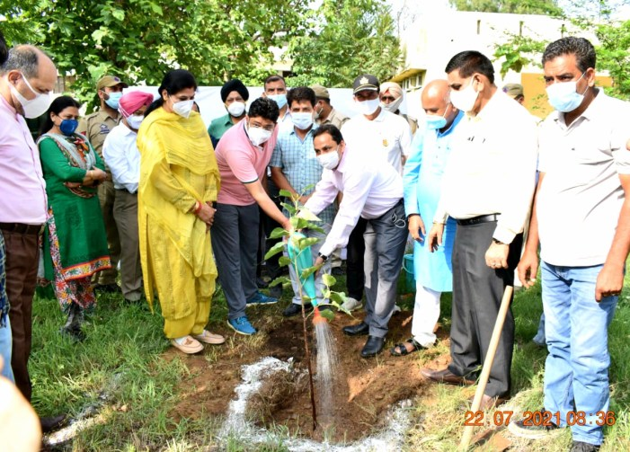 Plantation drive organized for green & clean Jammu