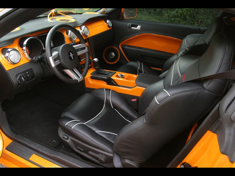 Accent Interior Door Panel 2007 Geigercars Ford Mustang Gt 520