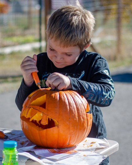 Leave pumpkin carving to the professionals.