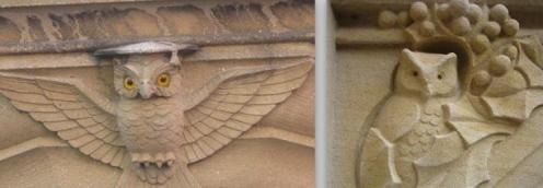 Yale-Owl-Architecture-1