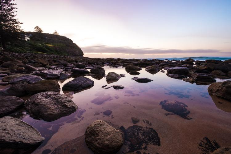 Tidepool - the Los Padres National Forest coastline has many.