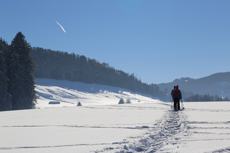 Snowshoeing through snow - Modoc National Forest is a great place for this.