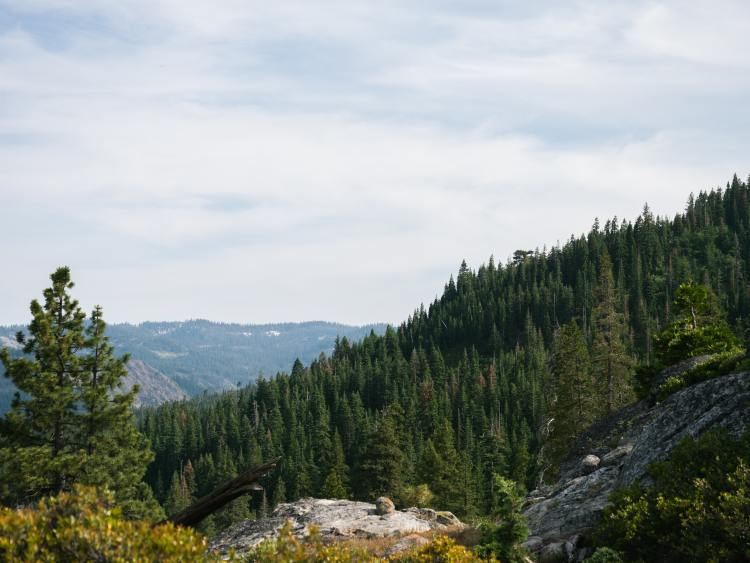 A view of Devil's Peak in Tahoe National Forest