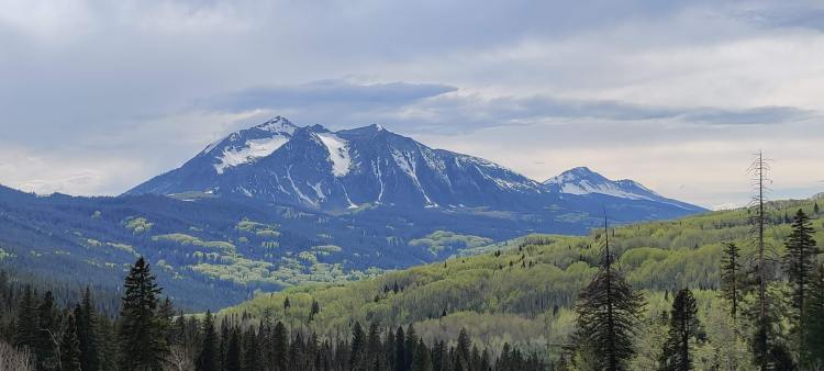 Snow-topped mountains in Gunnison National Forest with aspen trees in the foreground.