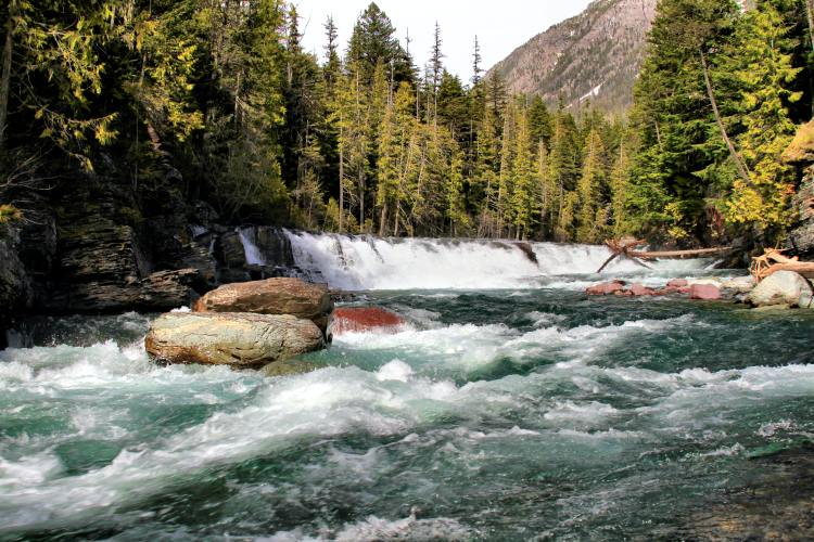 Rapids in a river - Stanislaus National Forest is a topnotch whitewater destination.