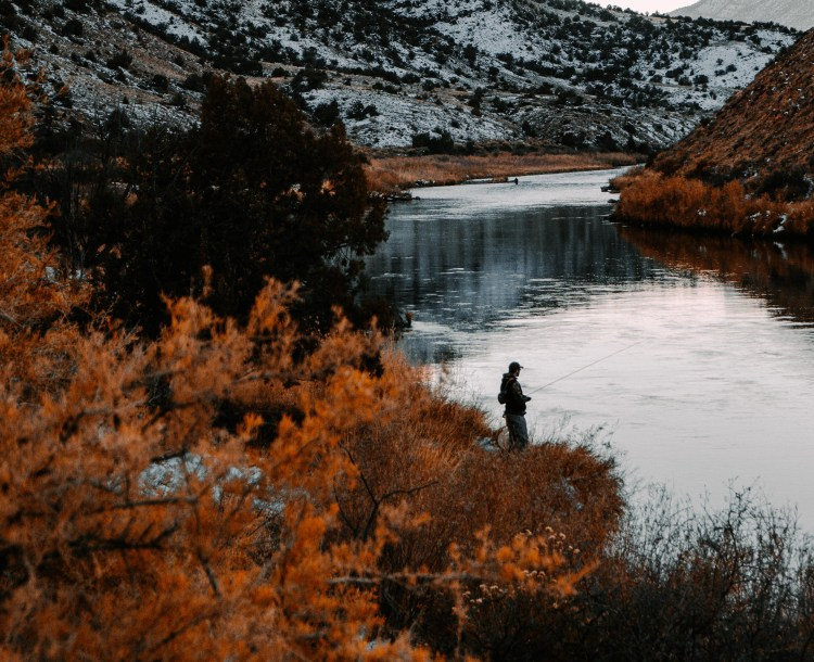 A fisherman in the Gunnison River which flows through Uncompahgre National Forest