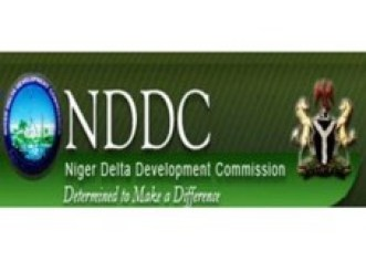NDDC denied us 16 months access to audit account, says AGF