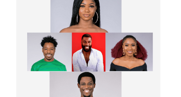 Five top trending Big Brother Naija housemates