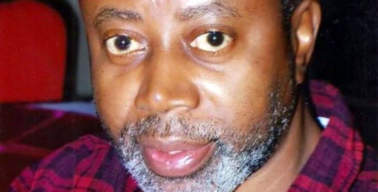 JUST IN: We never arrested Chido Onumah- DSS