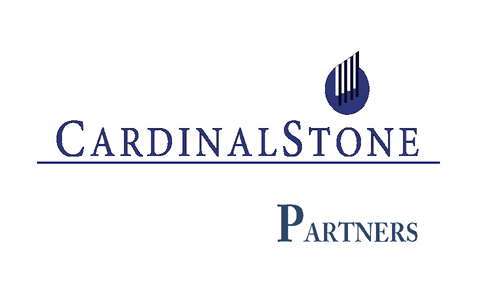 CardinalStone picks 10 stocks to watch in 2020 - The Nation Newspaper