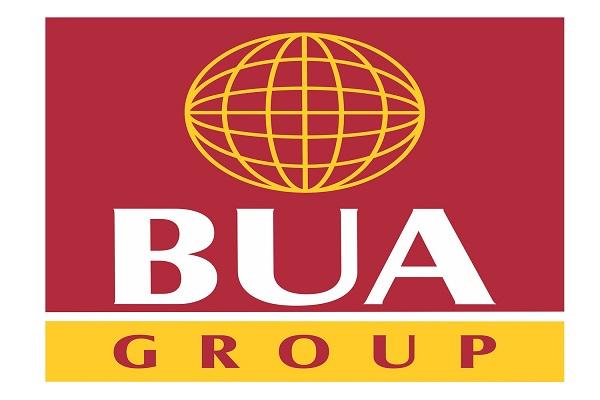 BUA Cement to establish three million tonnes plant in Adamawa