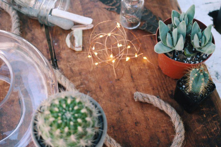 Crafts, DIY, Homemade, Cactus,