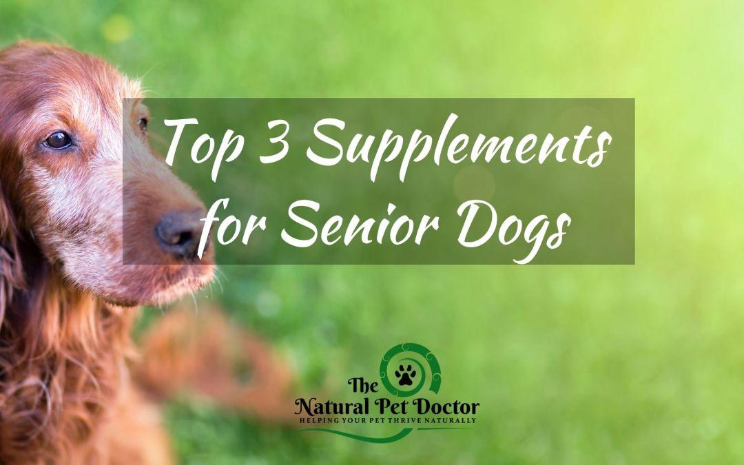 Top 3 Senior Dog Supplements
