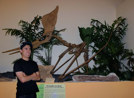 Masaki Kleinkopf next to a mounted skeleton of Pteranodon sternbergi on display at the Rocky Mountain Dinosaur Resource Center in Woodland Park, Colorado Photo Credit Zack Neher
