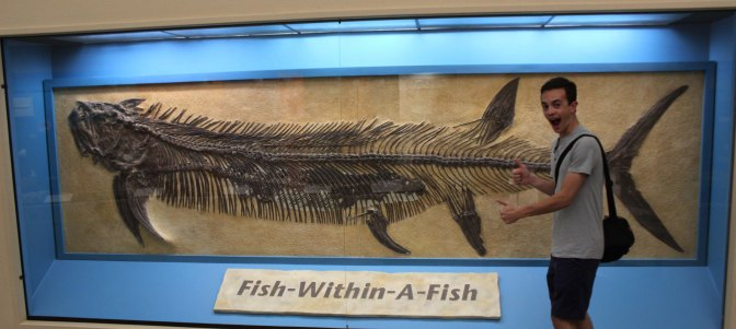 Zack Neher for scale with the famous Xiphactinus gillicus fish-within-a-fish Inception fossil on display at the Sternberg Museum of Natural History in Kansas Photo Credit Mark Neher