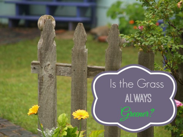 Is the grass always greener on the other side?