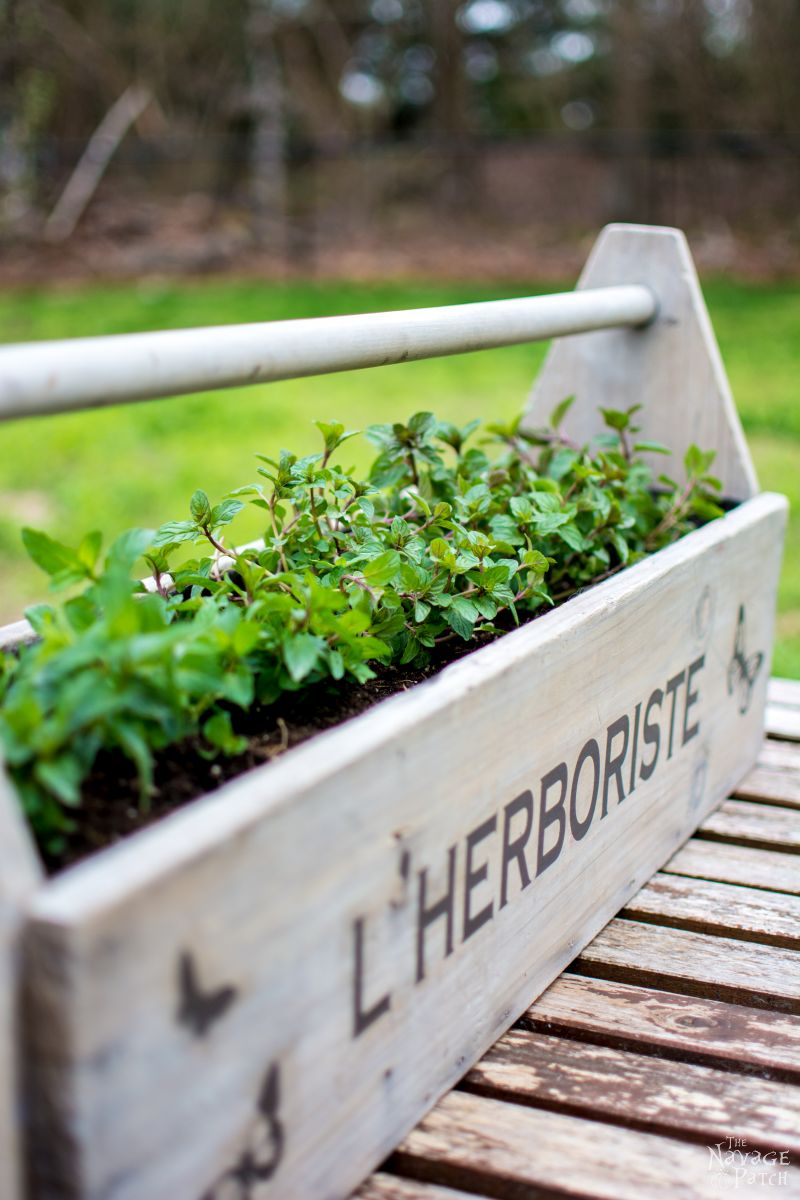 Toolbox to Planter - TheNavagePatch.com
