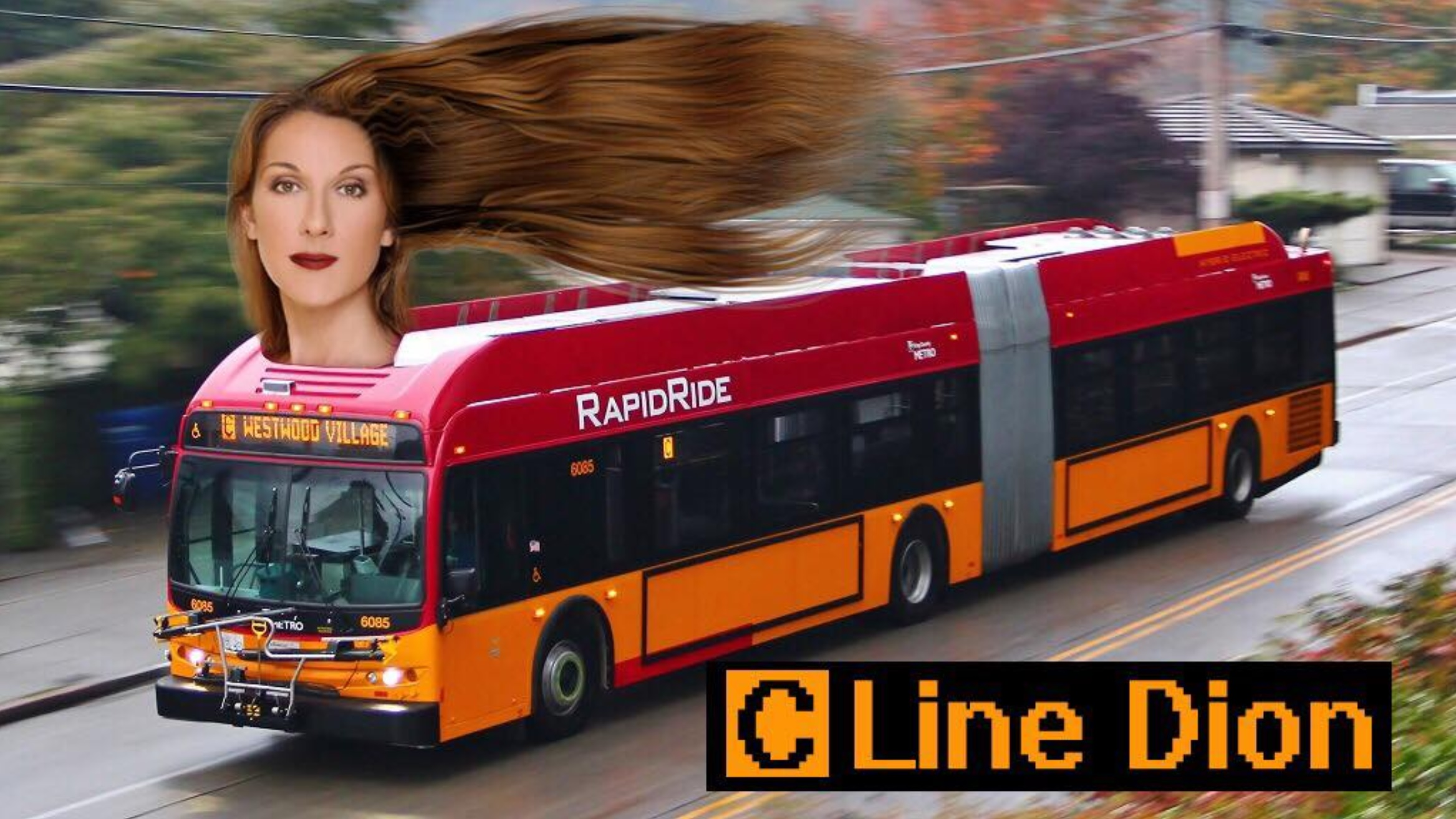 Celine Dion zagra koncert w Polsce. Znamy ceny biletów