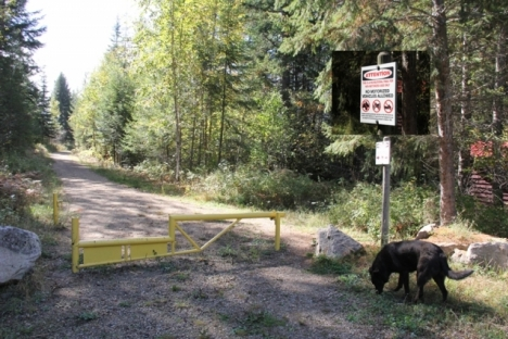 Slocan Valley Rail Trail, from South Slocan to Crescent Valley, is being paved. — The Nelson Daily file photo