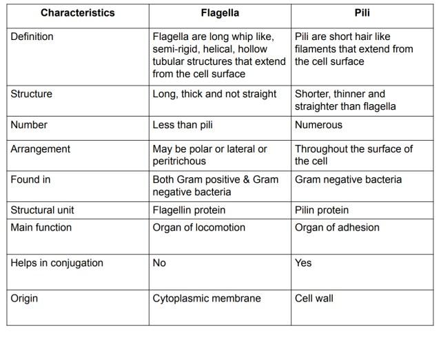 Differences between pili & flagella