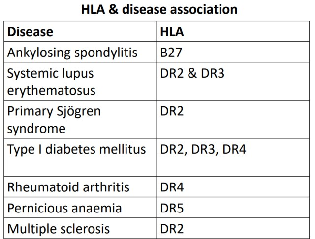 HAL and associated disease  Major Histocompatibility complex (MHC)
