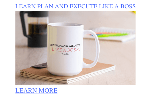 learn plan and execute like a boss mug