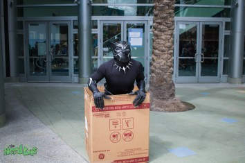 Black Panther fits and sits