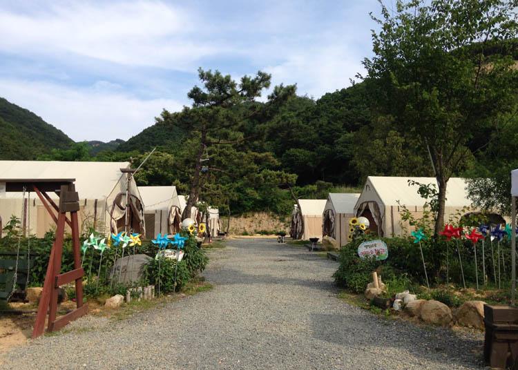 Glamping Adventures in Gyeongju, South Korea