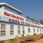 Phu Quoc Island Tour - Pearl Factory