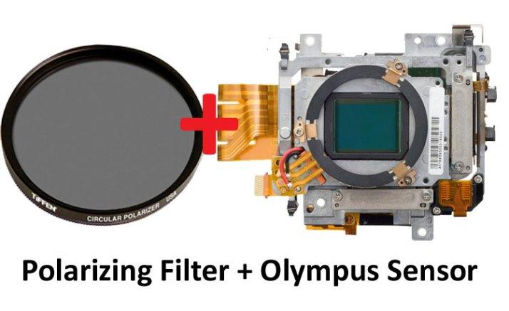 P-filter-and-sensor-image
