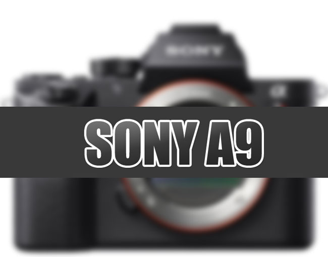 Sony-A9-image