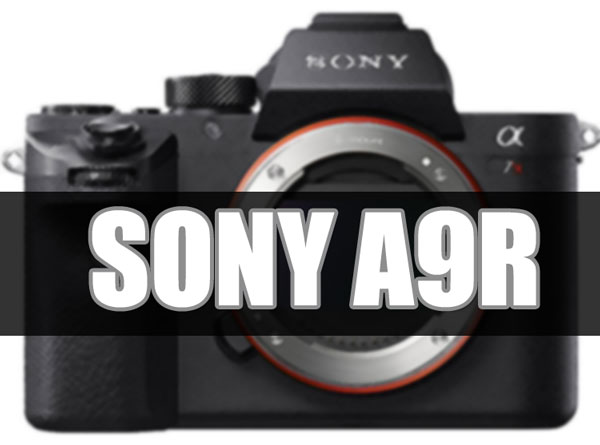 Sony A9R image