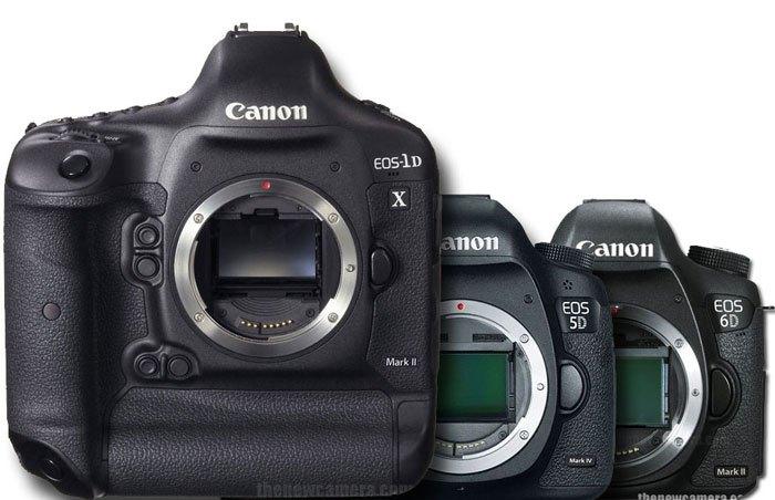Canon 1DX Mark II image