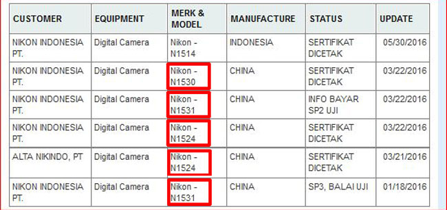 Nikon Indo website image
