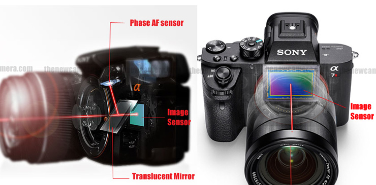 Difference between SLT and Mirrorless