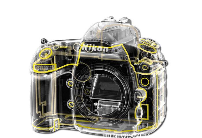 Nikon D850 and Nikon D820