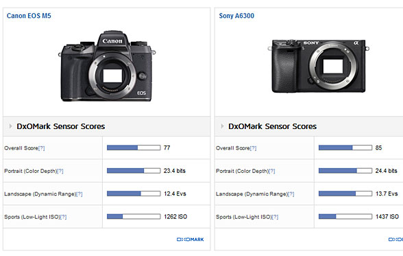 Canon-EOS-M5-vs-Sony-A6300-