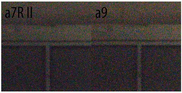 Sony A9 vs A7R II camera