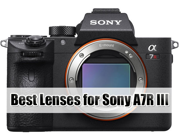 Best Lenses for Sony A7R III image