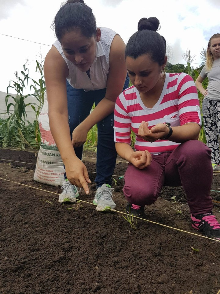 Elioena teaching biointensiev method gardening in a school garden.jpg