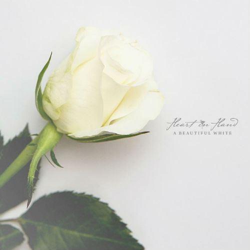 Heart-In-Hand-album-cover