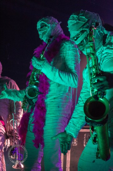 Here Come The Mummies 02.10.2018 Feel free to share around but DO NOT remove watermark and credit must be given if shared.Here Come The Mummies 02.10.2018 Feel free to share around but DO NOT remove watermark and credit must be given if shared.