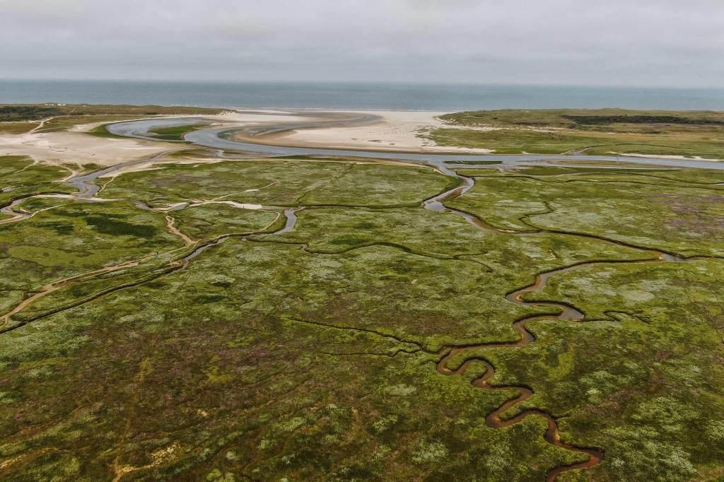 Natuurgebied de Slufter in Texel