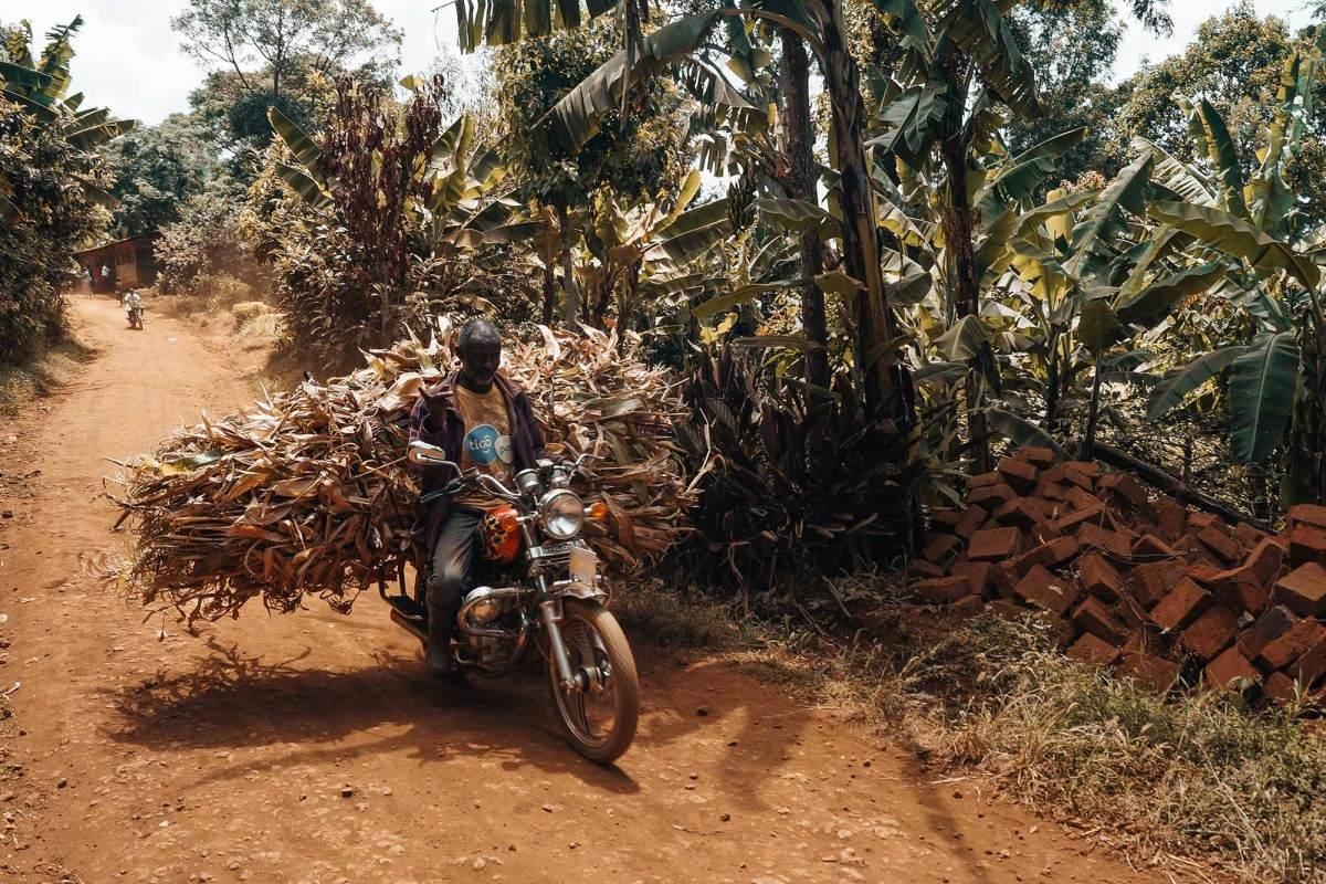 Tanzania vakantie tips