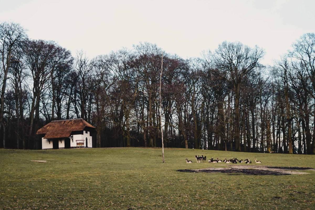 Arnhem Sonsbeek