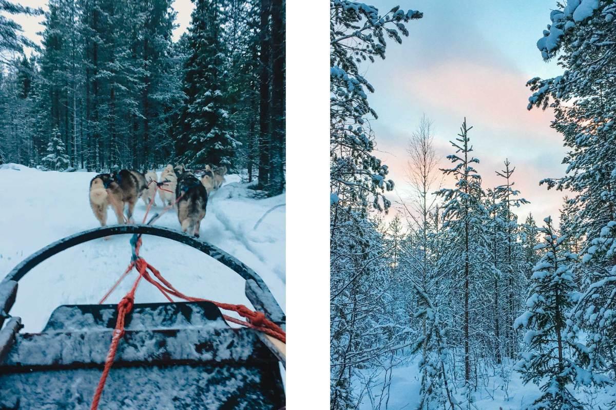 Licht in Lapland winterperiode