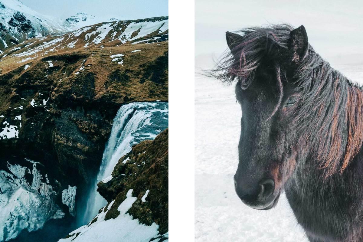 Skógafoss waterval IJsland winter