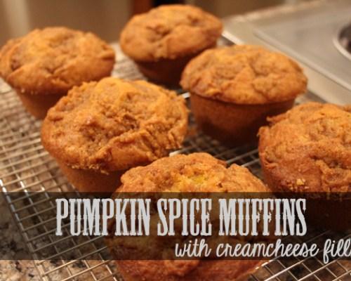 Pumpkin Muffin Recipe