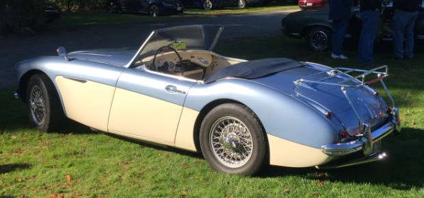 cars-and-coffee-newport-austin-healey